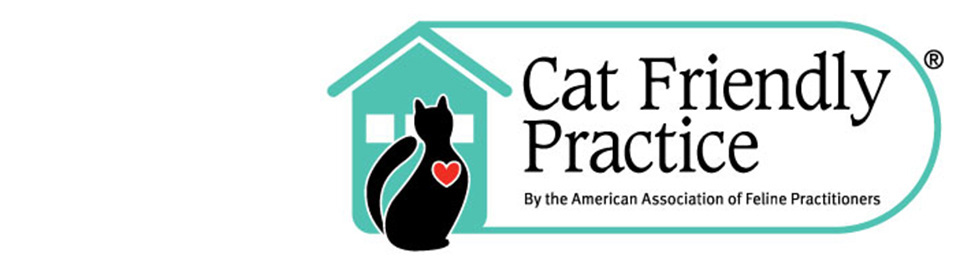 cat friendly practice delaware animal clinic vet
